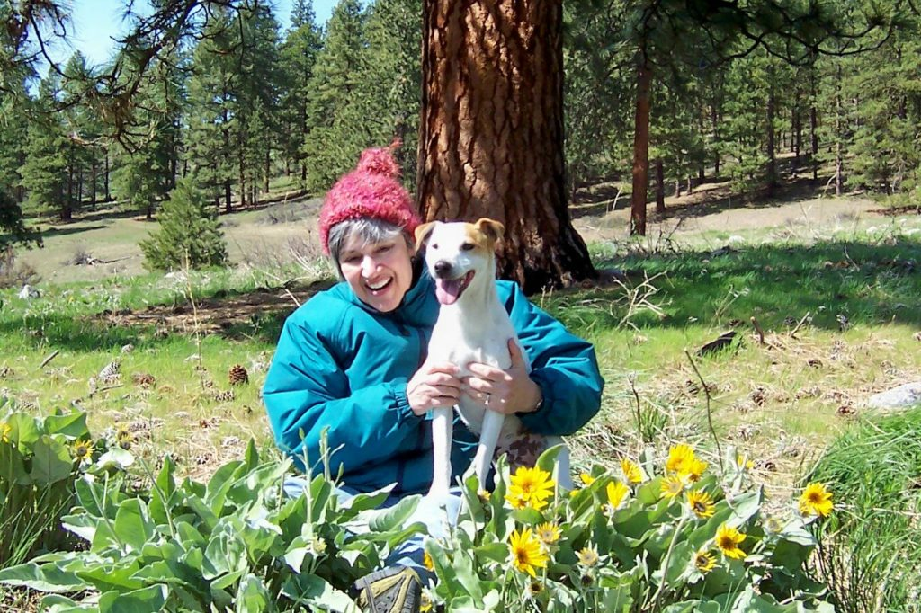 Our Jack Russell Terrier Kosmo taught me a lot about finding joy in simple things